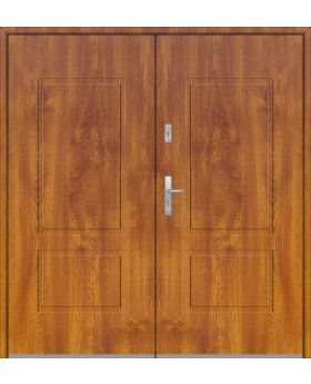 Fargo 14 double - double solid front door