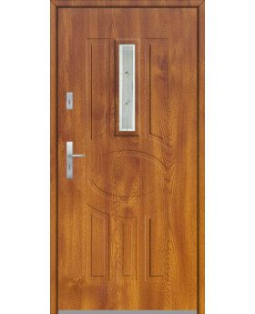 Fargo 33 - contemporary front door